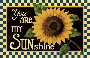 You Are My Sunshine Floor Mat - DS387