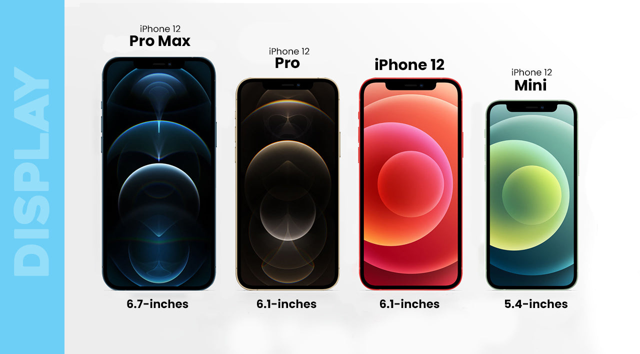 iPhone 12 Display Comparison