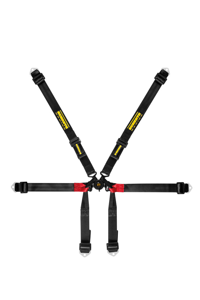 Schroth Formula 2x2 Harness