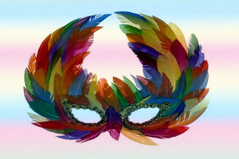 "Gay Pride Rainbow ""Raven"" Feather Mask $19.95▼"