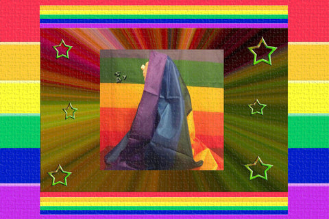 Gay Pride Rainbow Flag $35.00▼