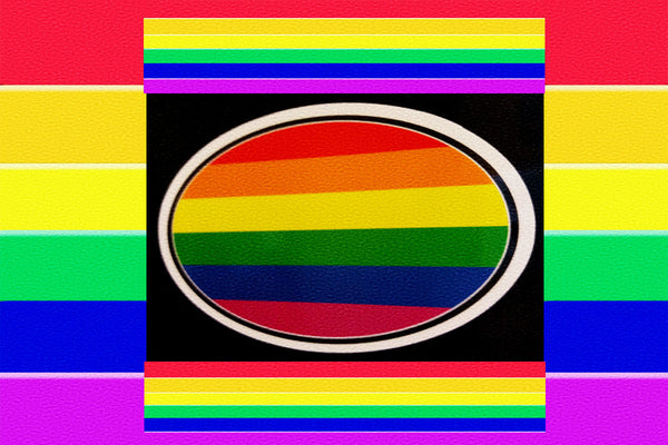 "Gay Pride Rainbow ""Flag"" Magnet Plus"