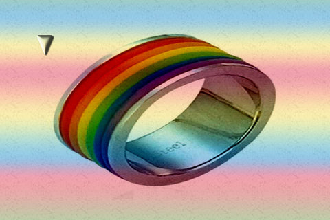 "Gay Pride Rainbow ""Lined"" Stainless Steel Ring $25.00▼"