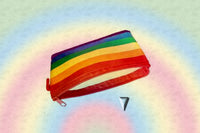 Rainbow Change Purse