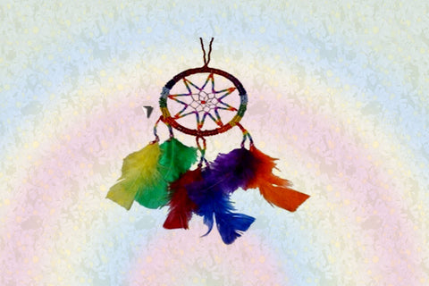 Gay Pride Rainbow Dream Catcher $30.00▼
