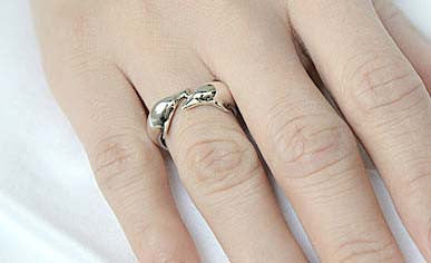 Free Engraved Inside Ring - Dolphins Ring  - 925 Sterling Silver Style Gift Idea Rocker Gothic Woman Jewelry -  Silver ring (SR-049)