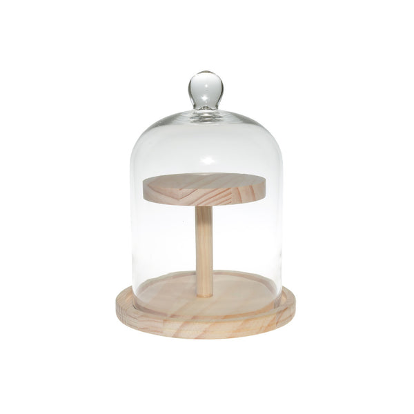 Terrarium: Wooden Stand with Glass Dome