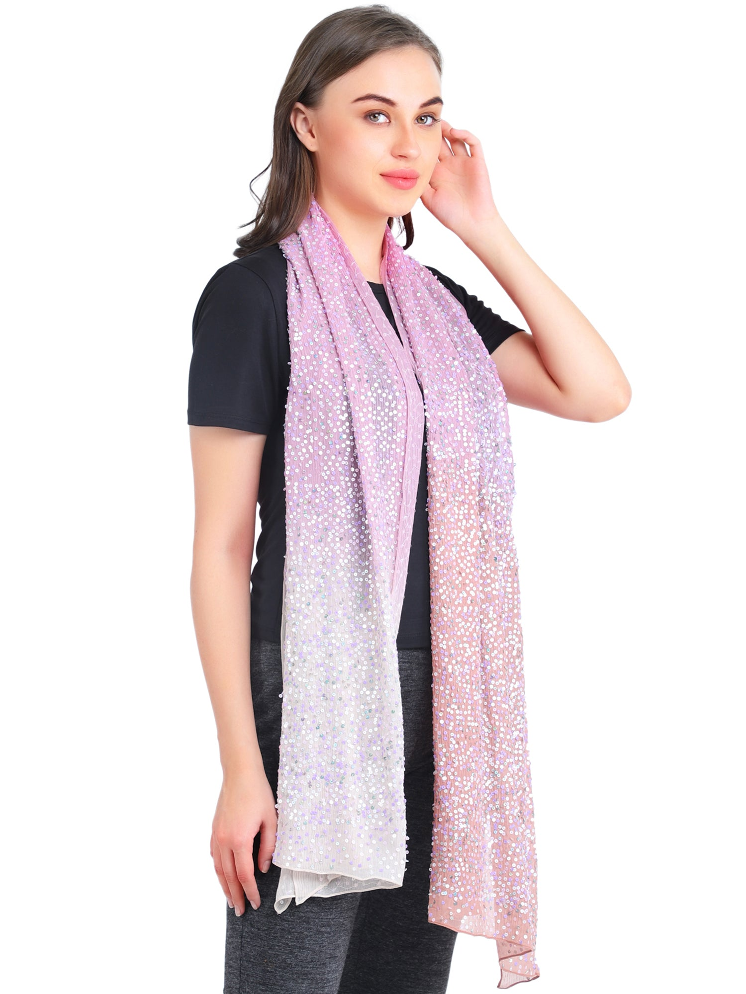Pashma Fully beaded shaded scarf crafted in Chiffon