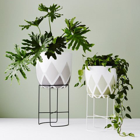 IVY MUSE SMALL CHAMELEON PLANT STAND IN WHITE