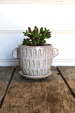 Speckle Glazed Planter
