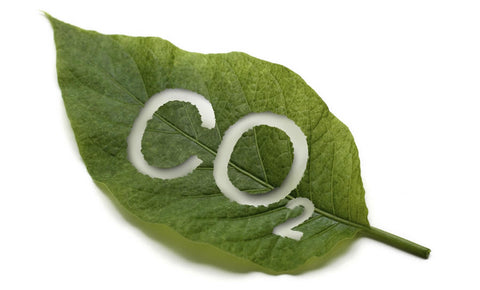 Co2 Refill