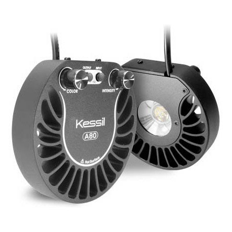 Kessil A80 Tuna Sun Light