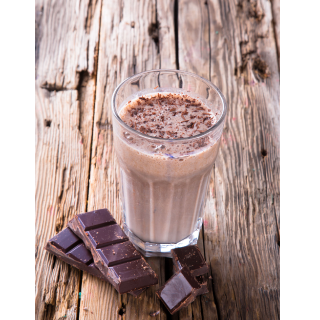 Organic Fermented Probiotic Plant Protein Meal Chocolate