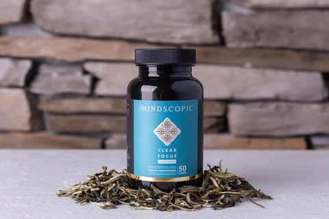 Clear Focus Caffeine Free nootropic from Mindscopic