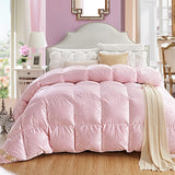 Luxury Goose Down Quilt Duvet Queen King Size White/Pink/Silver/Golden Luxury Winter Blanket Comforter - Anippe