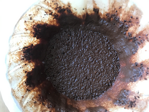 Coffee Grounds in the Garden...what you need to know!