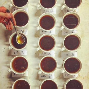 coffee tasting and cupping at home