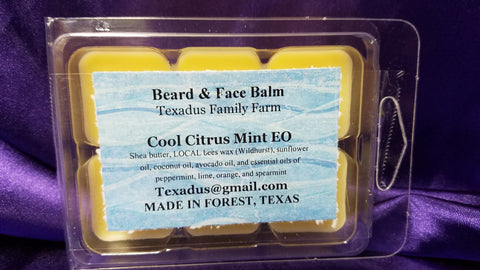 Cool Citrus Mint Beard and Face Balm