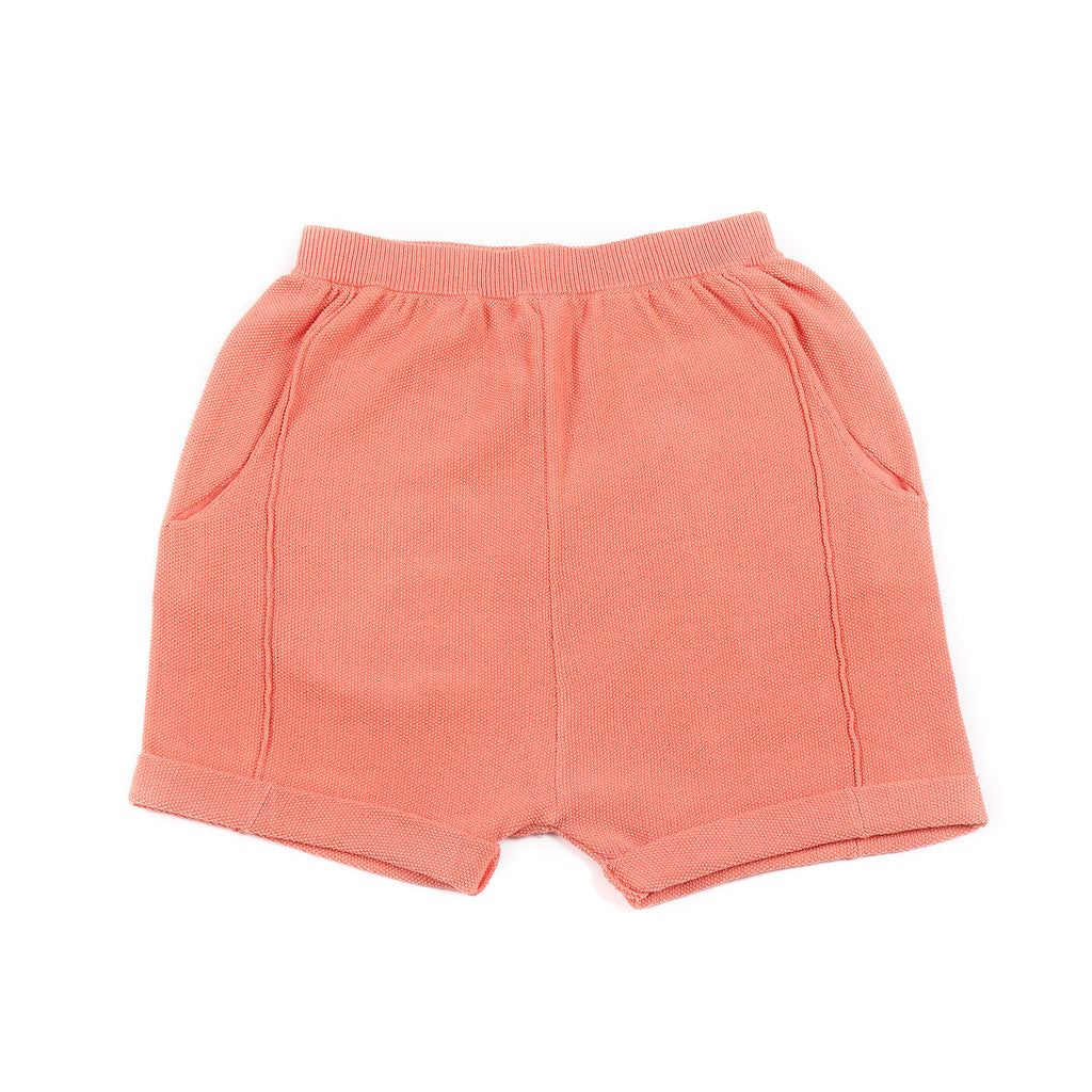 Moss Shorts Berry