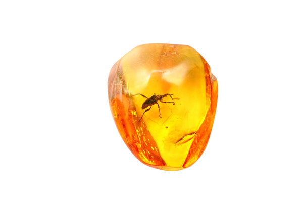 amber necklaces for headaches