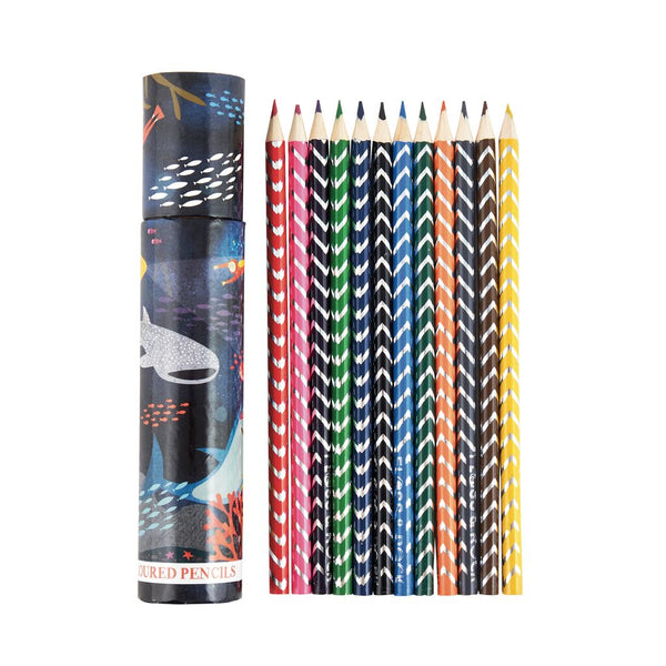 Kids Colored Pencil Set | Sharks 12 pc tube - Books and Activities - Poshinate Kiddos Baby & Kids Boutique - sharks colored pencil set