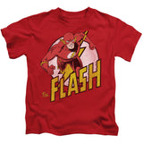 The Flash - The Nerd Cave - 12