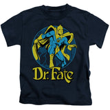 Dr Fate Ankh