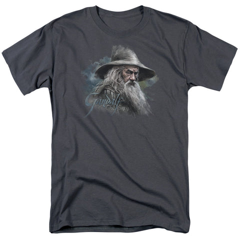 Gandalf The Grey - The Nerd Cave - 1