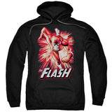 Flash Red & Gray - The Nerd Cave - 7