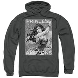 Princess of the Amazons - The Nerd Cave - 6
