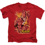 Flash Lightning - The Nerd Cave - 13