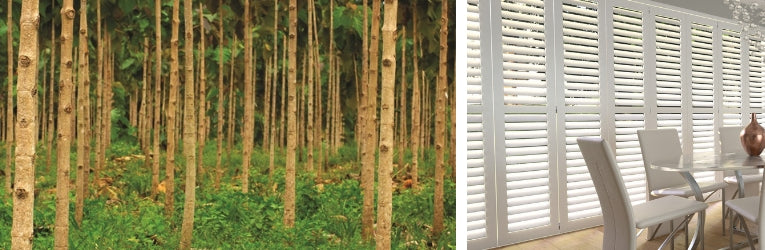Sustainability and Plantation Shutters