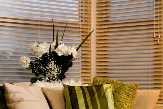 sofa, flowers on the window sill and wooden venetian blinds