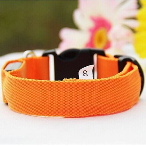 Glow In The Dark Dog Leash, Dogs Luminous Fluorescent Collars