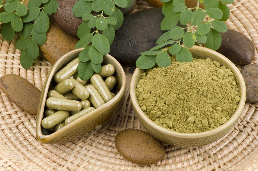 Benefits of Moringa Oleifera