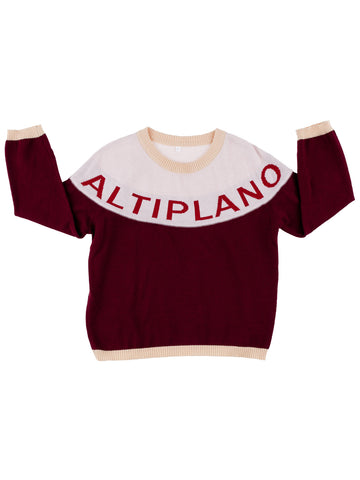 Tinycottons Bordeaux Altiplano Sweater Oversized