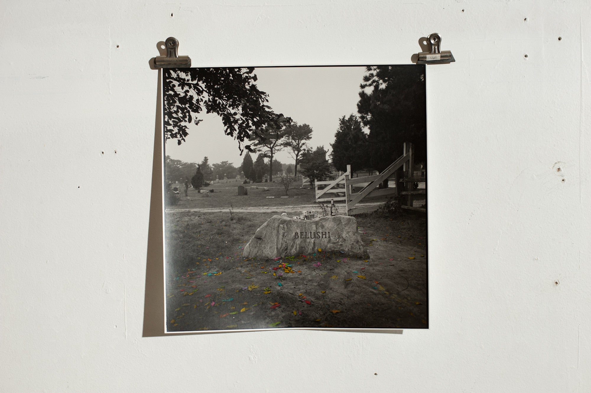 Ben Pearson - John Belushi's Grave - Hand Tinted Black and White