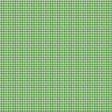 Snow Sweet Painted Gingham Green # C9666R-GREEN