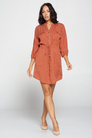 Classic Chick Tencel Dress in Rust