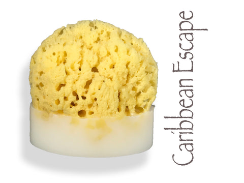 Caribbean Escape Sea Sponge Soap