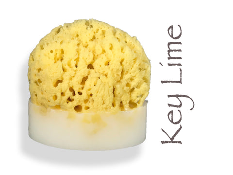 Key Lime Sea Sponge Soap