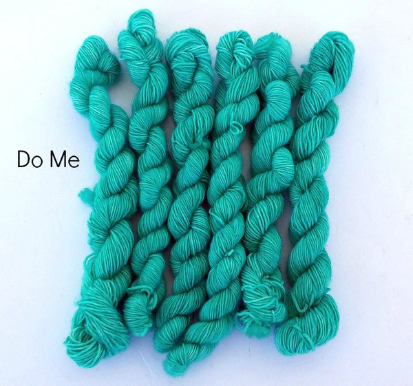 Do Me - 75% Superwash Merino 25% Nylon - Mini Sock