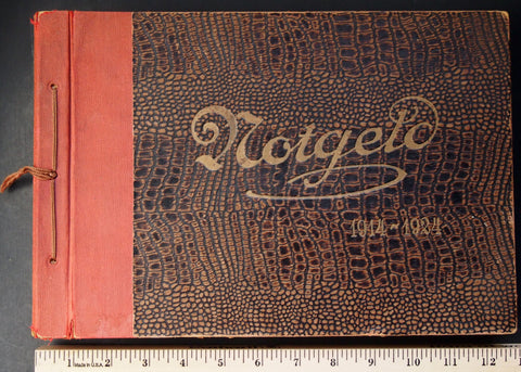 Original old Notgeld Album, empty (not up to modern preservation standards) #11