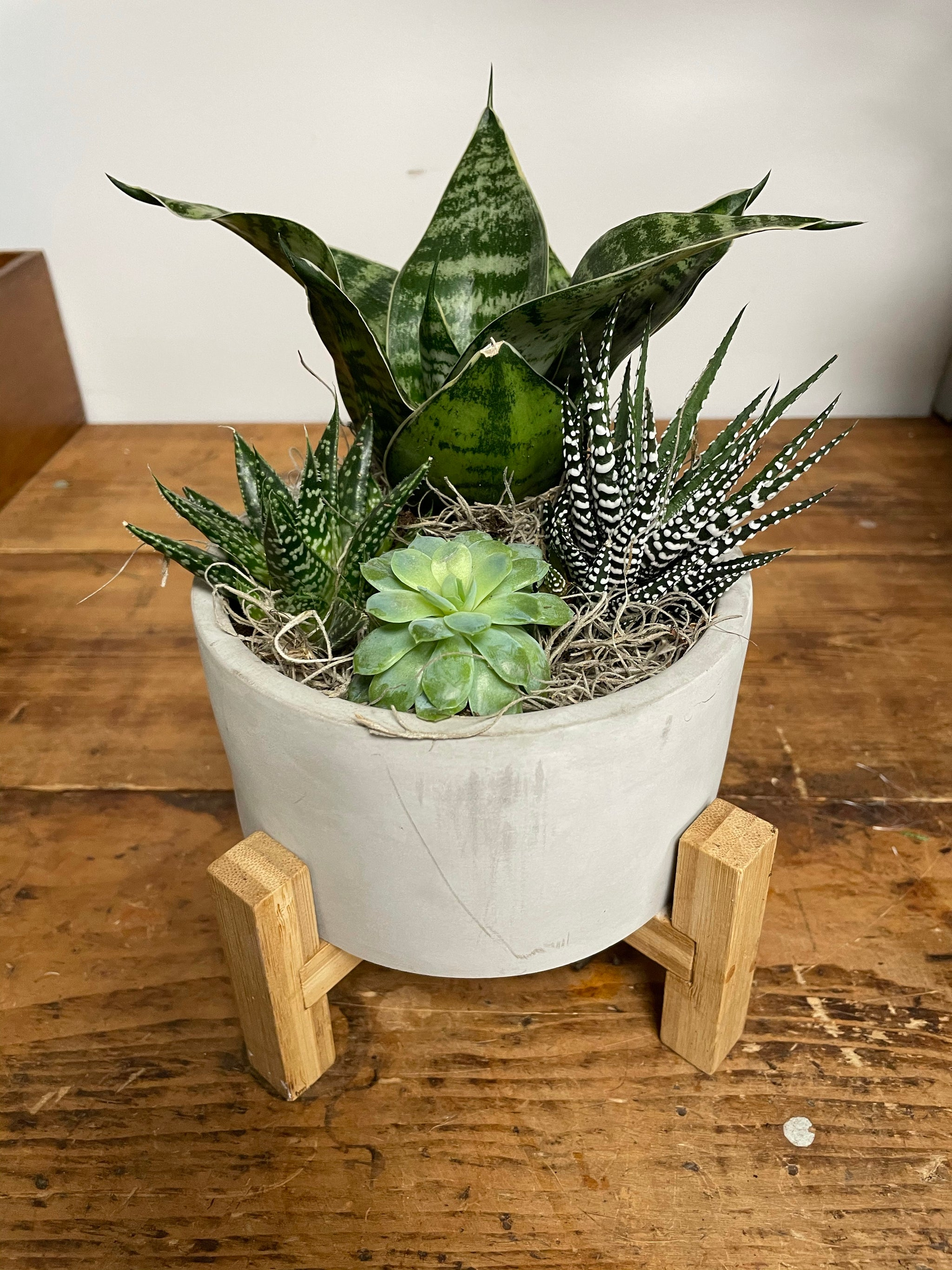 Succulent Planter with 4 legs