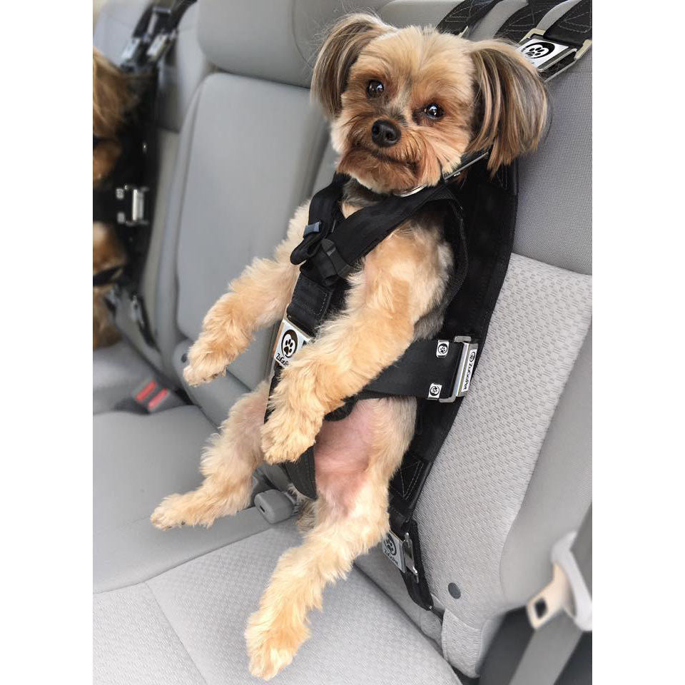 Adorable Hip bag with cute dog driving a car
