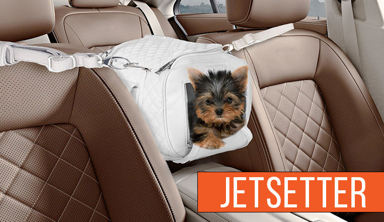 Jetsetter Collection