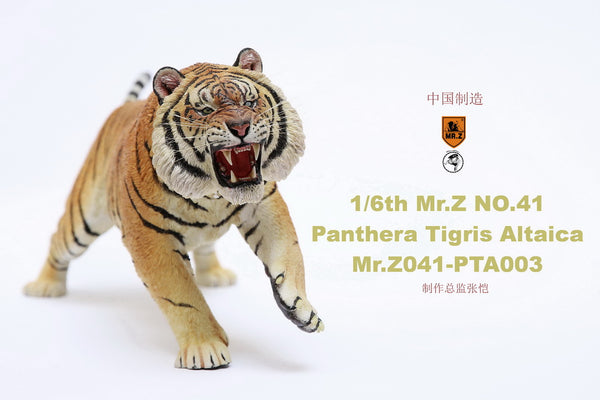 1/6 Scale Panthera Tigris Altaica Figure (3 Versions) by Mr.Z