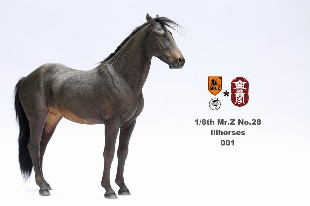 1/6 Scale Ili Horse Figure (6 Colors) by Mr.Z