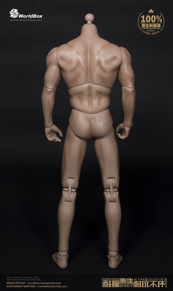 1/6 Scale AT-012 Broad Shoulder Male Body by Worldbox