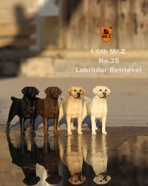 1/6 Scale Labrador Retriever Figure (4 Colors) by Mr.Z